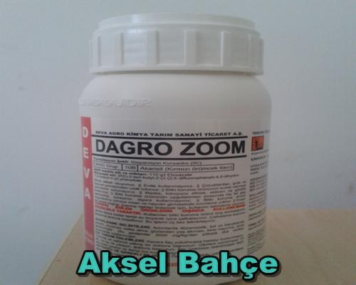 aksel bahçe dagro zoom