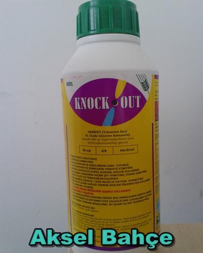 aksel bahçe knock out