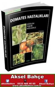 domates hastalıkları