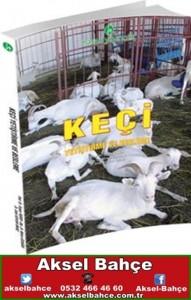 keçi yetiştirme ve besleme