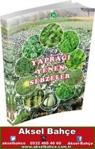 yaprağı yenen sebzeler-vert