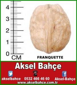 Franguette-vert
